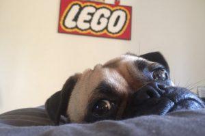 Kevin LEGO